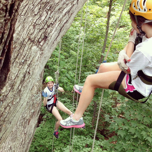 about-tree-climbing-1