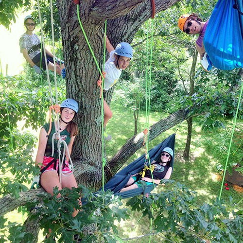 About Tree Climbing 2